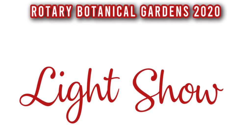 2020 Holiday Light Show logo